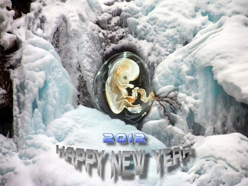 Sh109401ps-small-baby_in_ice-h